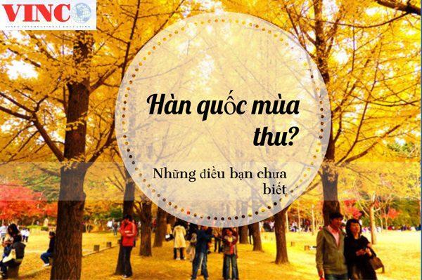 Du Lich Han Quoc Mua Thu