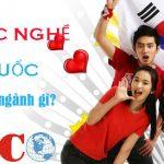 Du Hoc Nghe Han Quoc Co Nhung Nganh Gi